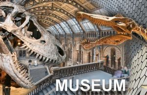 Most beautiful and impressive museums on our planet
