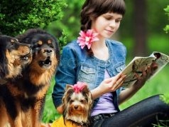 Most expensive dog breeds in the world