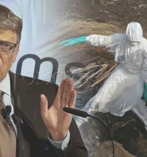 Bill Gates Warns 30 Million Will Die from Bio Terrorism