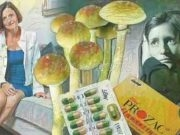 Magic Mushrooms Can Erase Depression