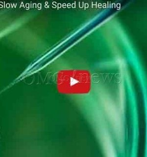 Stem Cells Can To Slow Aging & Speed Up Healing