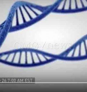 DNA Could Power The Hard Drives Of The Future