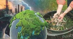 Green Composting Businesses on the Rise