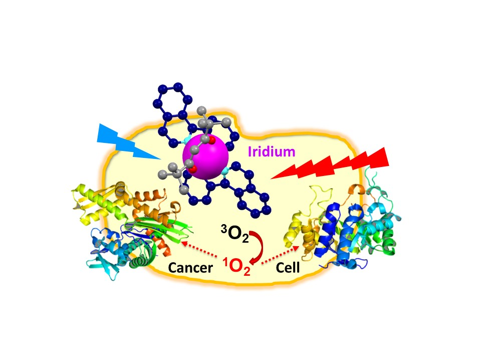 Iridium Metal Targeted to Destroy Cancer Cells
