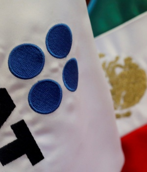 A flag with the logo of the Tax Administration Service (SAT) is seen at their offices in Mexico City