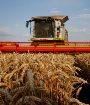 A farmer harvests wheat in Marquion, near Cambrai