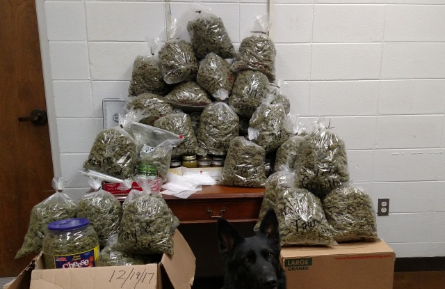 Marijuana seized by police from an elderly couple is pictured in York County