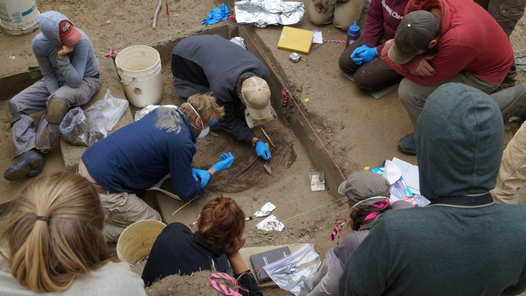 Scientists work on the excavation site of the 11,500-year-old remains of two infant girls in Tanana Valley
