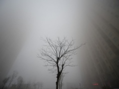 Buildings are seen in heavy smog during a polluted day in Jinan