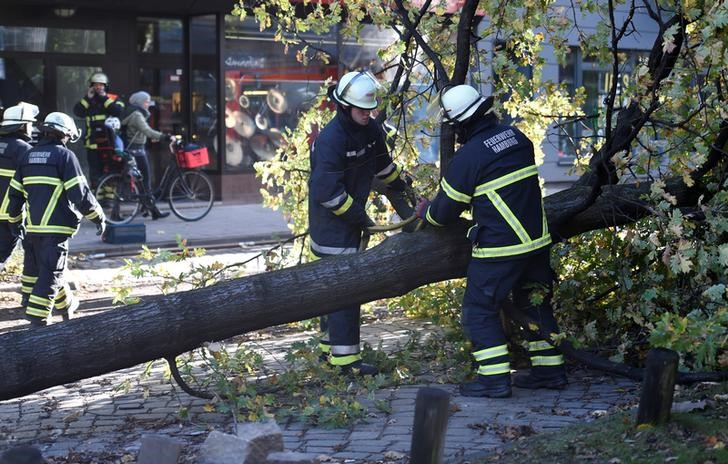 "Frefighters work on a tree that fell during stormy weather caused by a storm called ""Herwart,"" in Hamburg"
