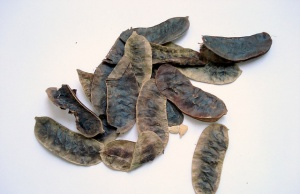 Long-term use of laxatives such as senna and rhubarb
