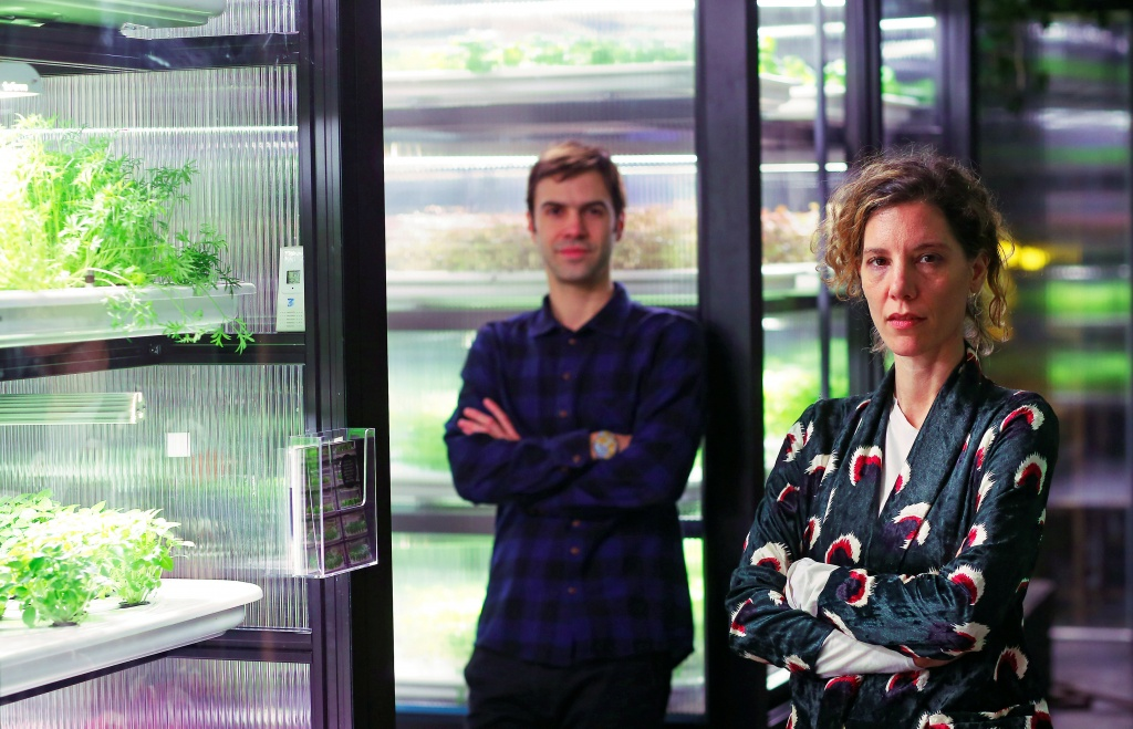 Galonska and Michaeli, founders of the urban farming start-up Infarm, pose for a picture beside indoor growing systems at the company's showroom in Berlin
