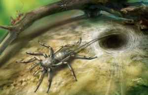 An illustration of a Cretaceous arachnid Chimerarachne yingi found in Myanmar