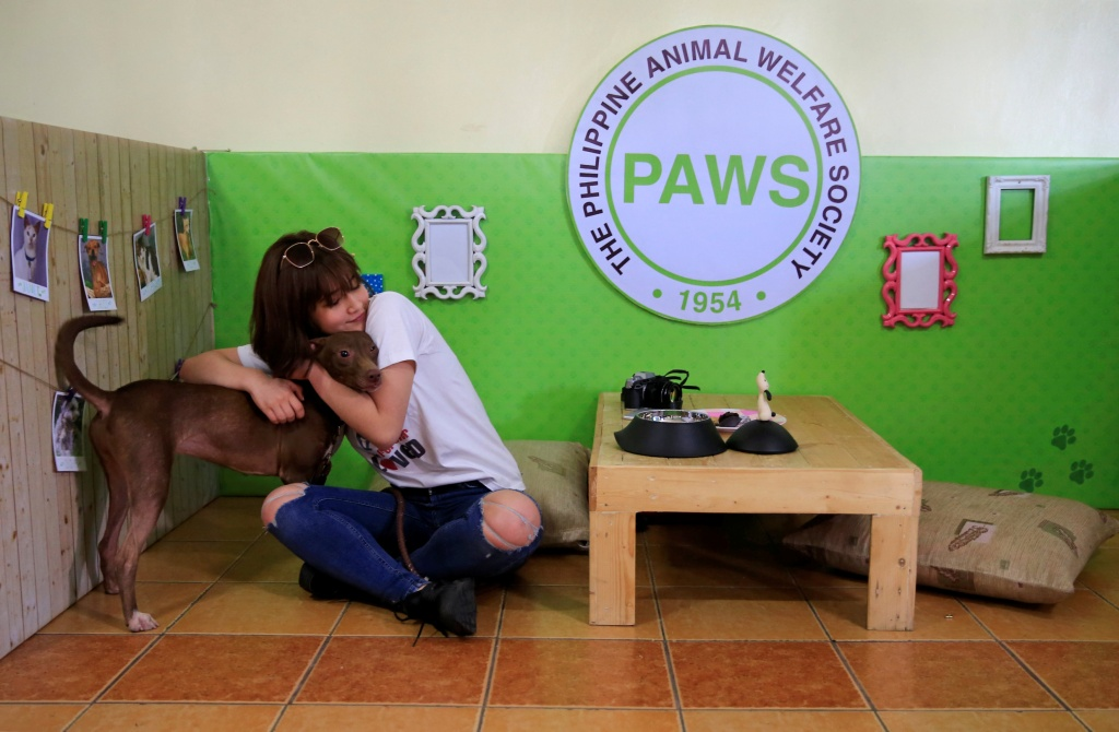 "A pet lover hugs a shelter dogs during a ""Date with Dogs"" inside the Philippine Animal Welfare Society (PAWS) headquarters in Quezon city, metro Manila"