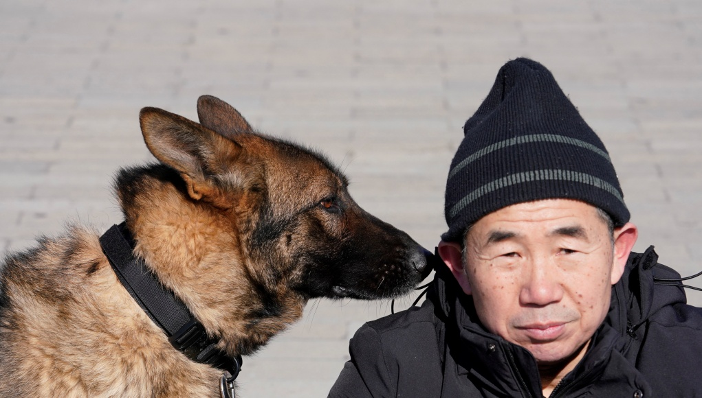 Head of canine patrol squad Chang Fumao sits next to a guard dog after a daily patrol in the Forbidden City in central Beijing