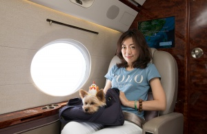 Zoe Man poses with one of her pet dogs onboard a private jet during her Japan trip
