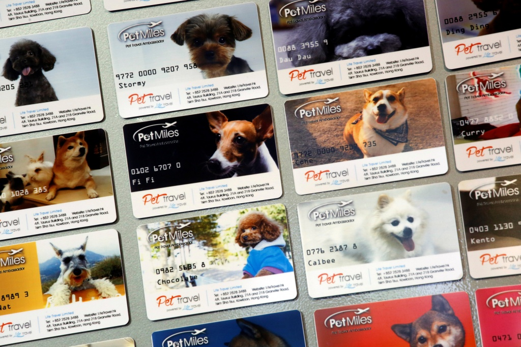 """Pet Miles"" member cards, issued by Life Travel, are displayed at their office in Hong Kong"