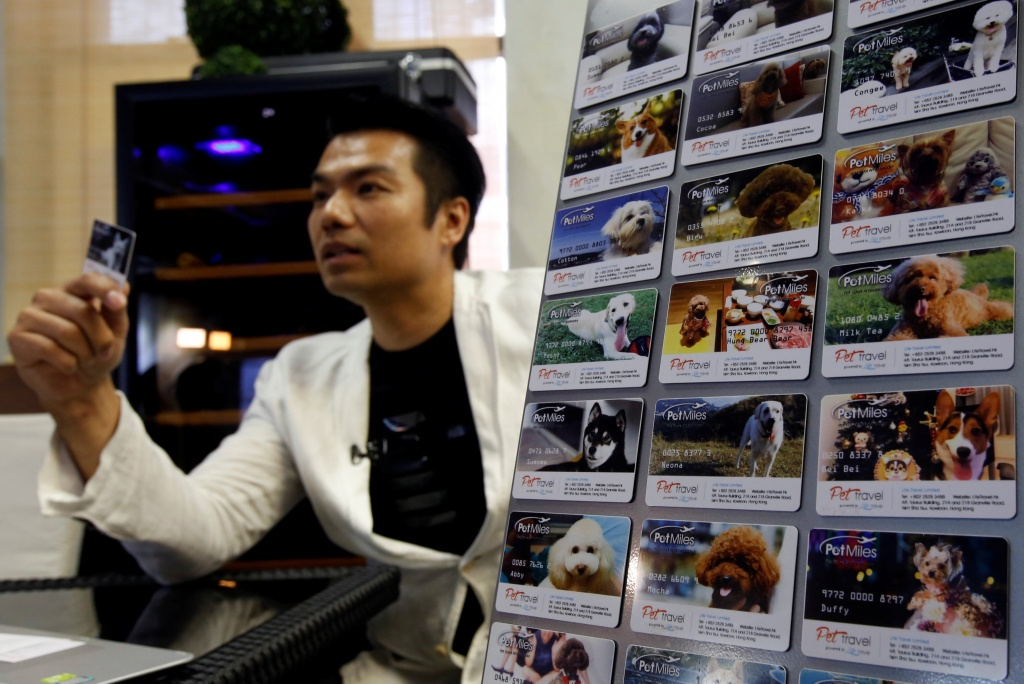 "Life Travel Business Development Director Raymond Chung shows ""Pet Miles"" member cards, issued by his company, at his office in Hong Kong"
