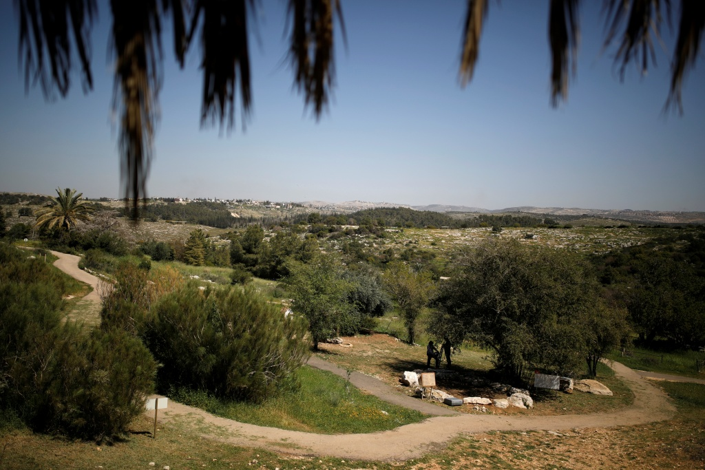 A general view of the vegetation of Neot Kedumim, Israel