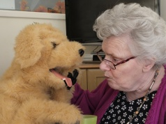 Katrina Brooke, aged 73, interacts with ÔBiscuitÕ the robotic dog at Templeman House Residential and Dementia Care Home in Bournemouth