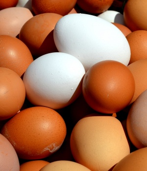 U.S. recalls more than 200 million eggs over salmonella fears