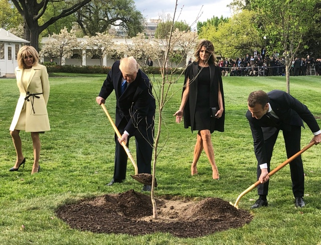 U.S. President Trump and French President Macron shovel dirt as Brigitte Macron and first lady Melania Trump watch at the White House in Washington