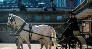 Two Windsor Greys, which will pull the carriage at the wedding of Prince Harry and Meghan Markle, at the Royal Mews at Buckingham Palace, London.