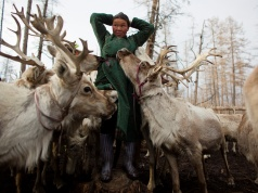 The Wider Image: Mongolia's reindeer herders fear lost identity