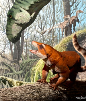 The newly identified Cretaceous Period species Cifelliodon wahkarmoosuch in artist rendering by University of Southern California