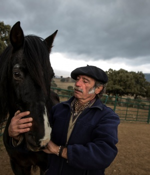 The Wider Image: Horse whisperer helps stress sufferers