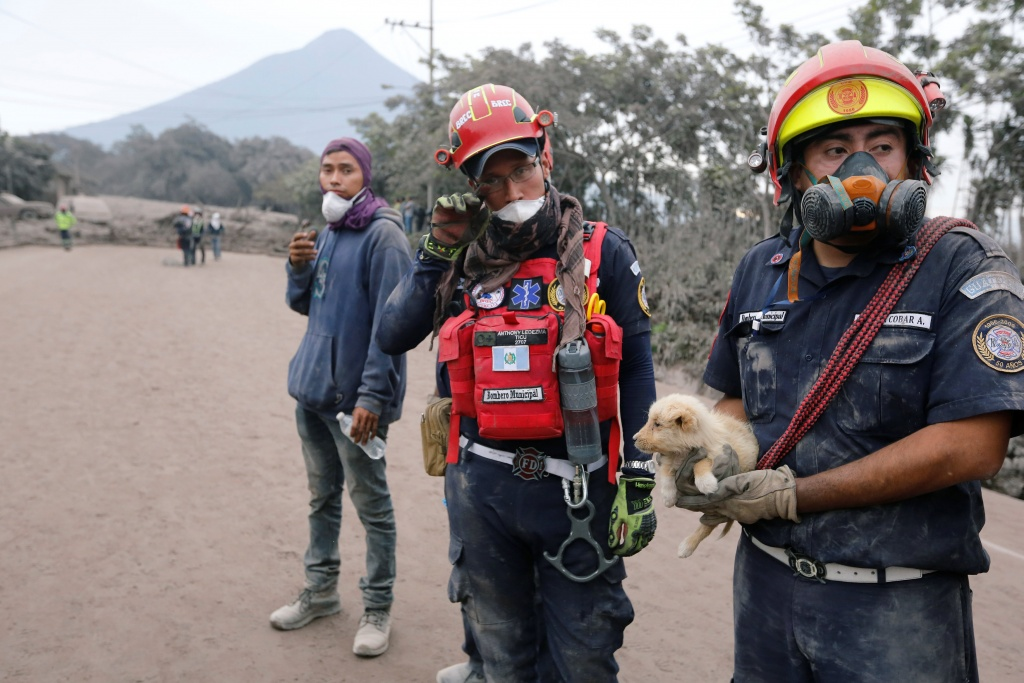 Firefighters, one of them holding a puppy, stand at an area affected by the eruption of the Fuego volcano in the community of San Miguel Los Lotes in Escuintla