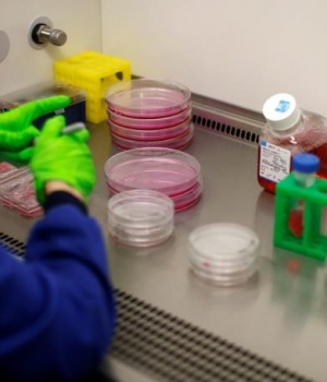 Preparations of media for cultivating cancer cells, being made in cancer research laboratories at the Old Road Campus research building at Oxford University, in Oxford