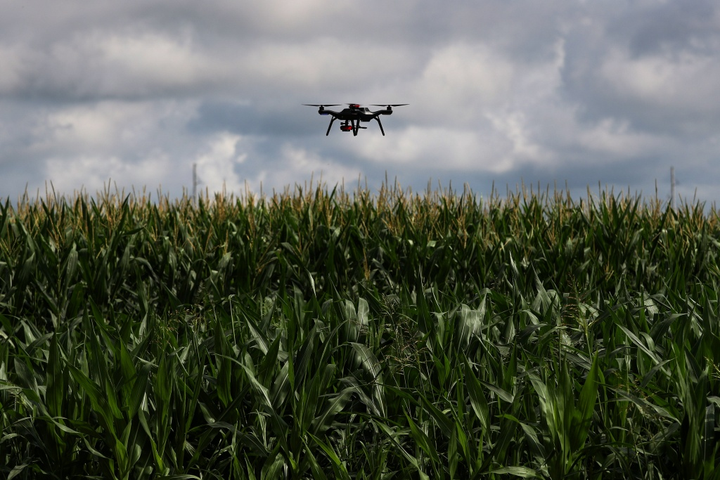 A drone is used to survey a corn research field in College Station, Texas