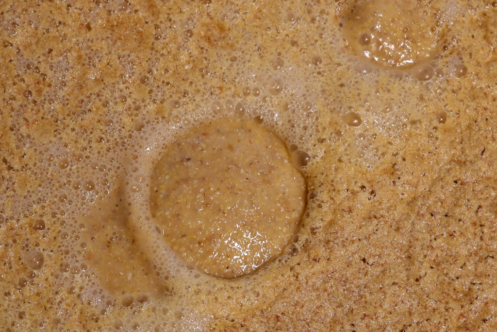 Carbon dioxide bubbles rise from mash being fermented into beer at Firestone & Robertson in Forth Worth, Texas