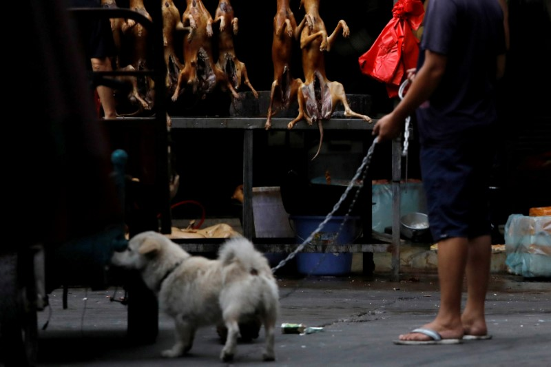 A man walks with his pet dog as he talks to a vendor during the local dog meat festival in Yulin