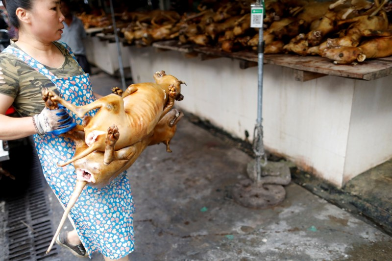 A woman carries a butchered dog during the local dog meat festival in Yulin