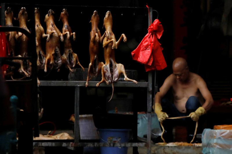 Butchered dogs displayed for sale during the local dog meat festival in Yulin