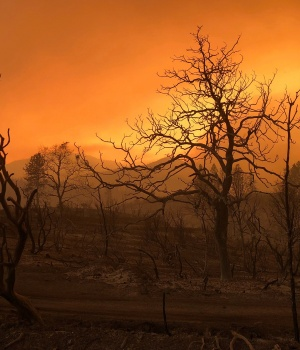 A blackened landscape is shown from wildfire damage near Keswick, California
