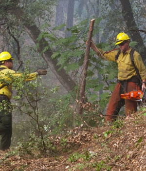 U.S. Forest Service firefighters clear brush to protect a house from the Carr Fire near Igo