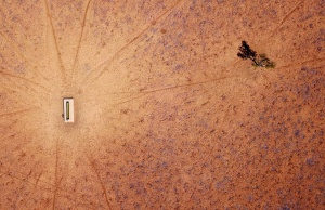 The Wider Image: Australia's drought - the cancer eating away at farms