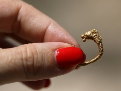 An employee of Israel's Antiquities Authority holds a gold earring believed to date back more than two millennia after been unearthed near the site of the ancient Jewish temples in Jerusalem, outside Jerusalem's Old City