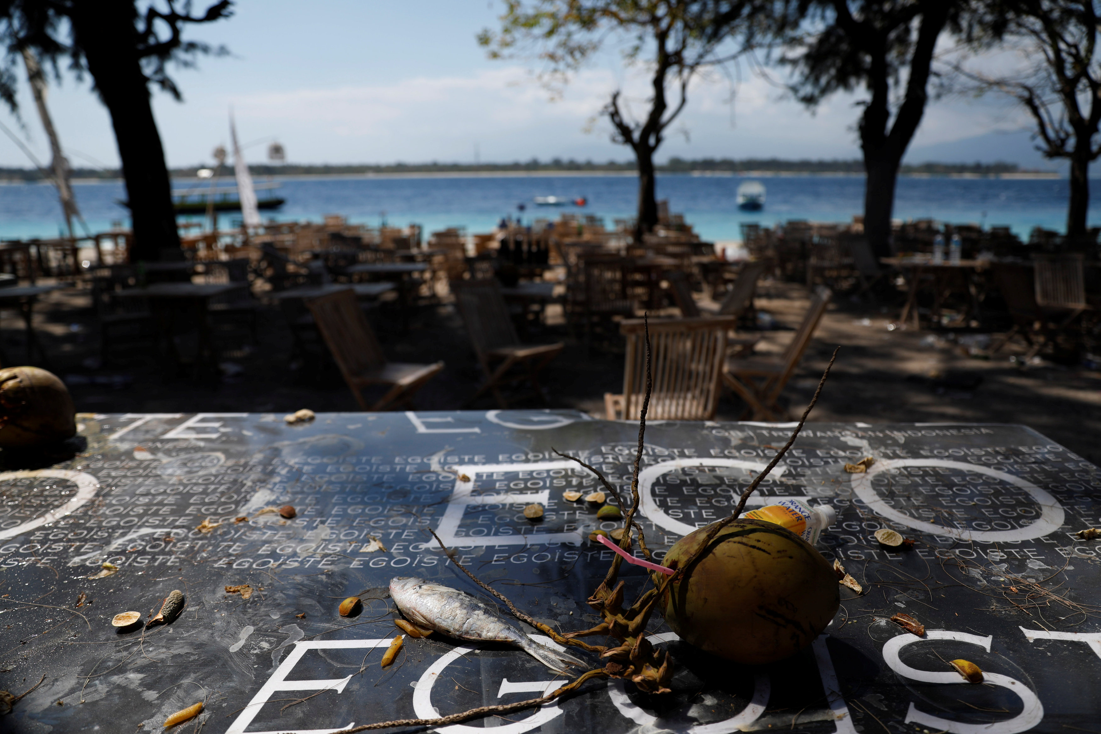 A fish and coconut are pictured at an empty restaurant after foreign and domestic tourists fled after Sunday's earthquake in Gili Trawangan Island