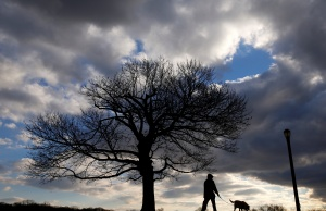 A man is seen in silhouette walking a dog at Cunningham Park in the Queens borough of New York