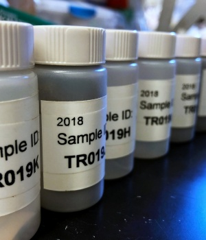 Lead samples line up ready for testing at the Lamont-Doherty Earth Observatory in Palisades