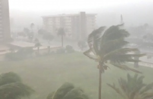 Trees sway as Storm Gordon descends on Fort Lauderdale, Florida, U.S.