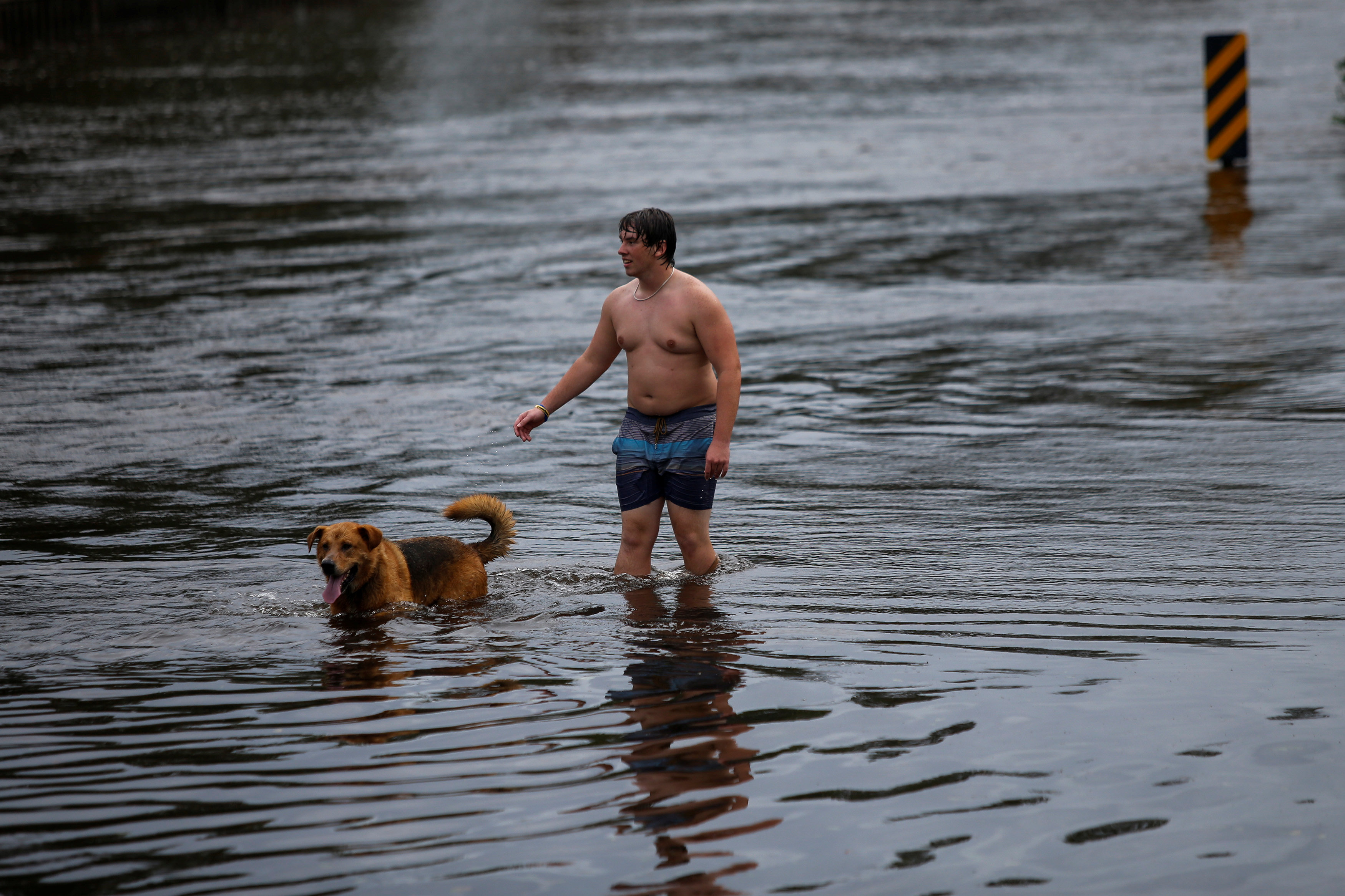A man and his dog walk along a flooded street after the passage of tropical storm Florence in New Bern