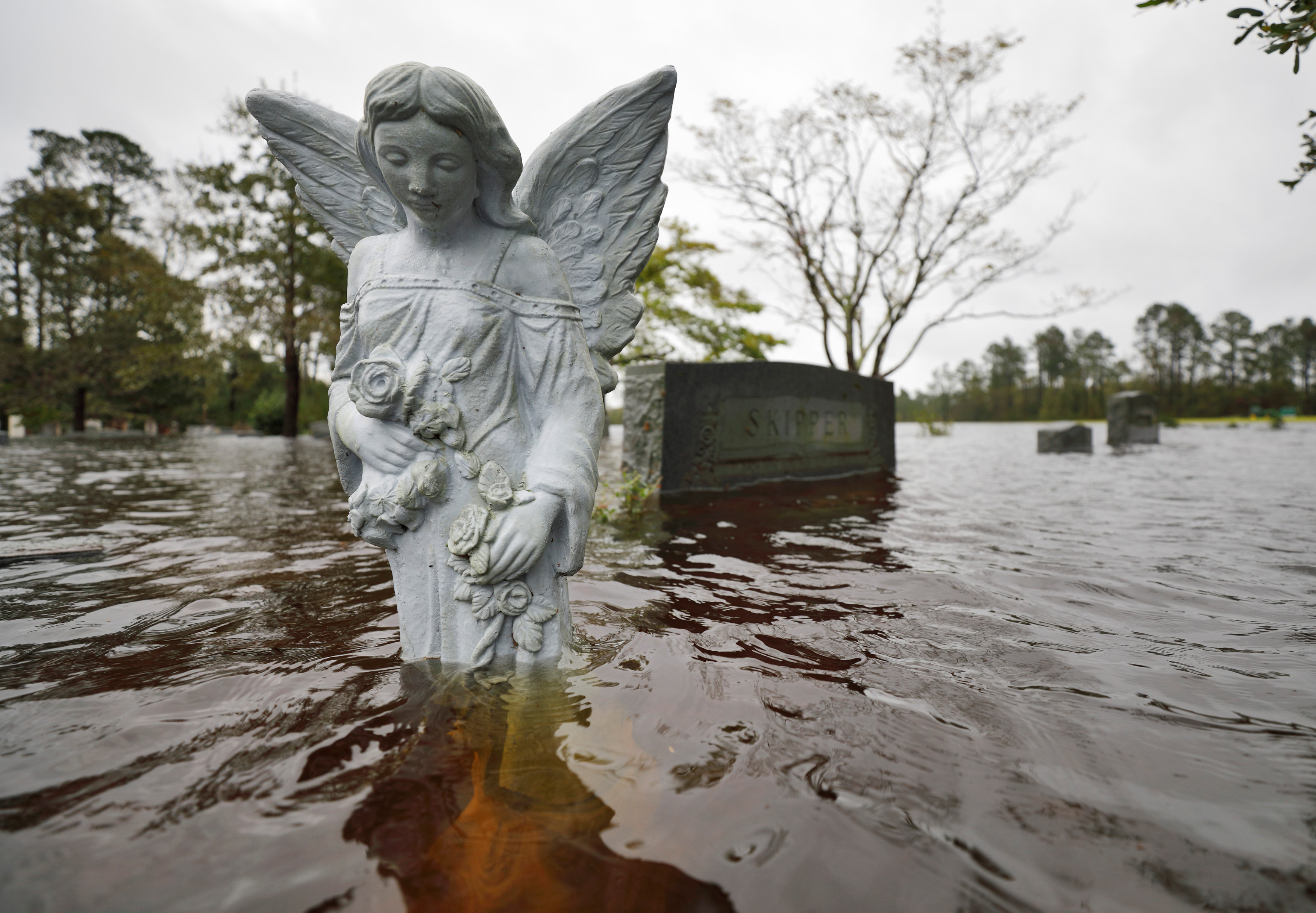 A statue of an angel is partially submerged by flood waters in the cemetery of a church where residents took shelter and later evacuated, in the aftermath of Hurricane Florence in Leland, North Carolina