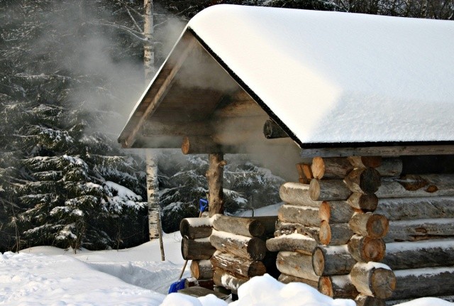 Did You Know? Saunas Prevent Male Dementia