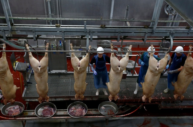 Employees cut slaughtered pigs on a production line at a pork processing plant in the village of Borschevka