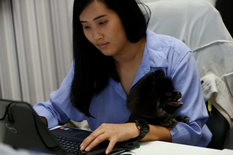 Cherry holds a dog as she works in an office of a digital advertising agency which promotes bring-your-dog-to-work in Bangkok